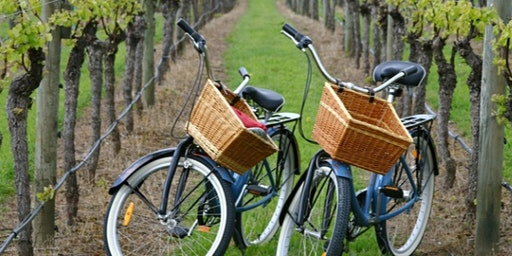 Private Guided Wine Cntry Bike Tour (Up to 7 people)  $759 in New York (LI)
