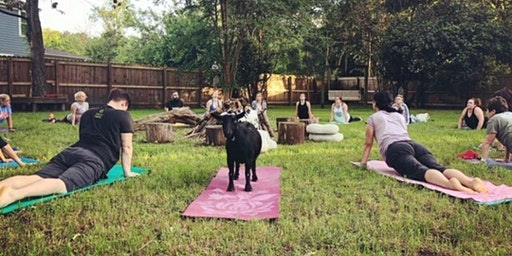 Commit To Be Fit + Goat Yoga