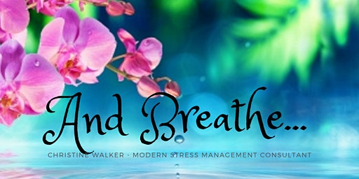 Modern Stress Management Foundation - Accredited Training