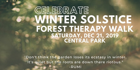Winter Solstice Forest Bathing Walk  tickets