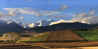 Travel Food and Wine Writing in Rioja