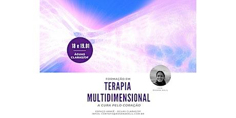 Formação em Terapia Multidimensional (Águas Claras/DF) ingressos