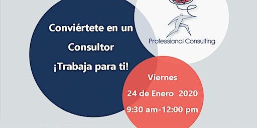 Conviértete en un Consultor ¡Trabaja para ti!