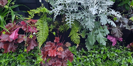Open Book: Vertical gardens tickets