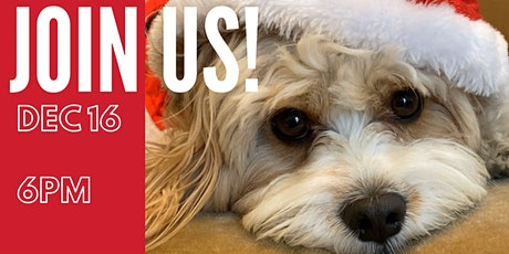 NYC Holiday Dog PAWTY  – hosted by Puppy Mama tickets