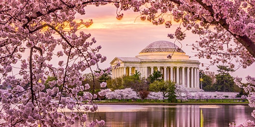 Master Clinicians Skills & Procedural Workshops -Washington DC, Spring 2020