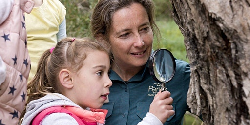 CANCELLED Junior Rangers Flora Explorer- Point Nepean National Park