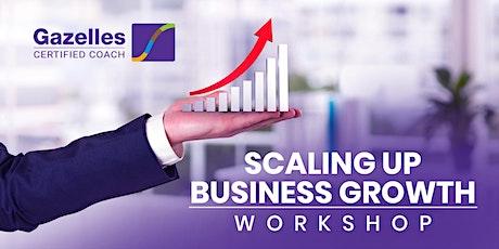 Scaling Up Workshop - Mastering the Rockefeller Habits 2.0 tickets
