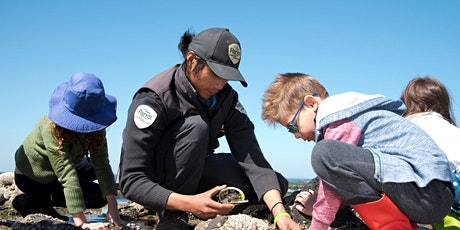 Junior Rangers Beach Combing -  Port Phillip Heads Marine National Park tickets