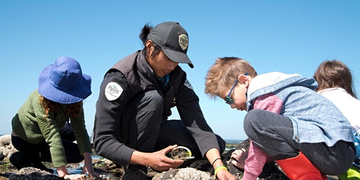 Junior Rangers Beach Combing -  Port Phillip Heads Marine National Park