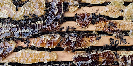 Winter Bee Lectures – session two – products of the hive tickets