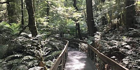 Junior Rangers Rainforest Explorer- Yarra Ranges National Park tickets