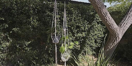 Make a Macramé Plant-Hanger (Adult Workshop)