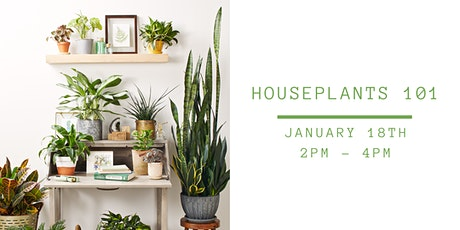 Houseplants 101 (including houseplant and kit!) tickets