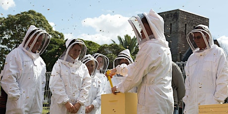 URBAN HUM Backyard Beekeeping Workshop tickets