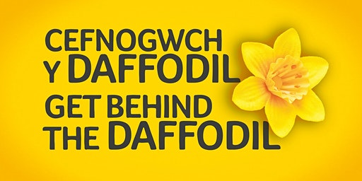 Marie Curie's Great Daffodil Appeal 2020