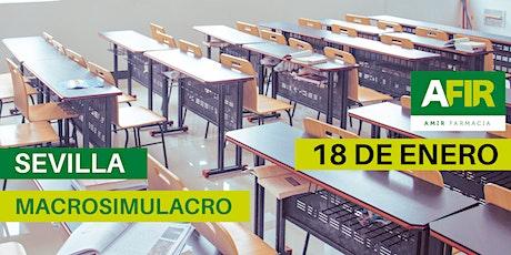 MACROSIMULACRO SEVILLA 18 DE ENERO entradas