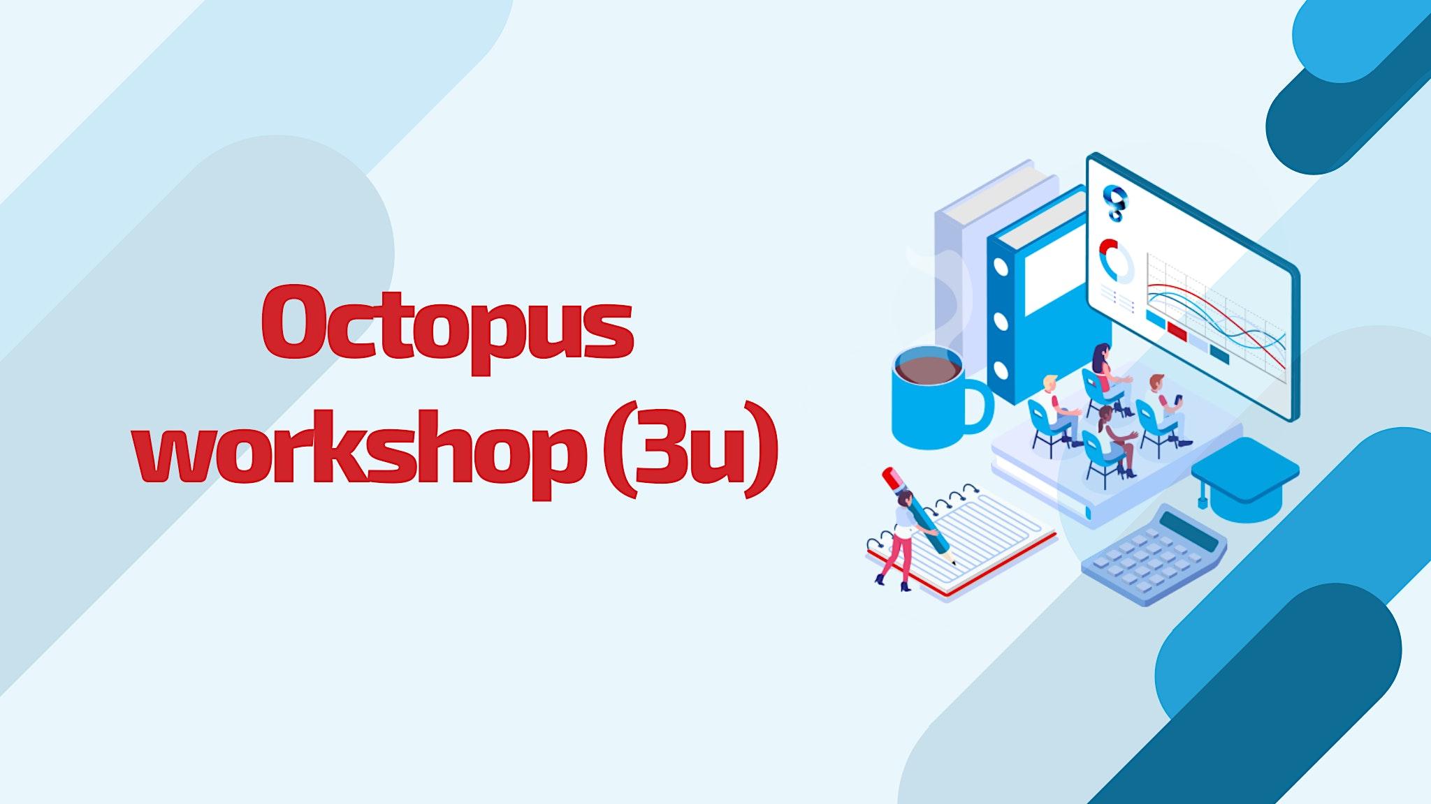 Octopus opleiding: Leuven