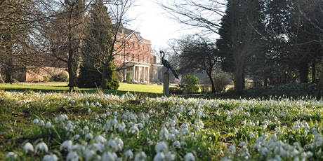 Raveningham Hall Guided Snowdrop Walk and Talk tickets