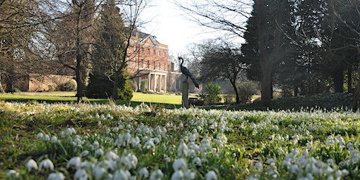 Raveningham Hall Guided Snowdrop Walk and Talk