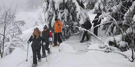 Balade le Jour de l'An au Hohneck dans les Vosges ! billets