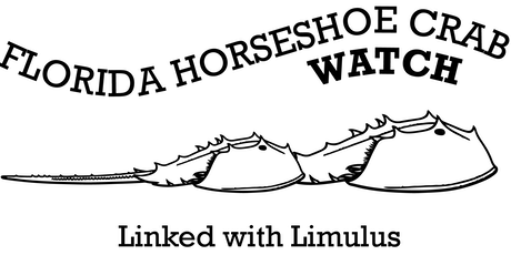 2020 Florida Horseshoe Crab Watch Volunteer Training - Cocoa FL tickets