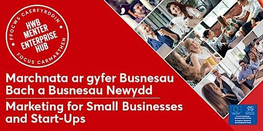 Marchnata i Fusnesau Bach   Marketing for Small Businesses and Start Ups