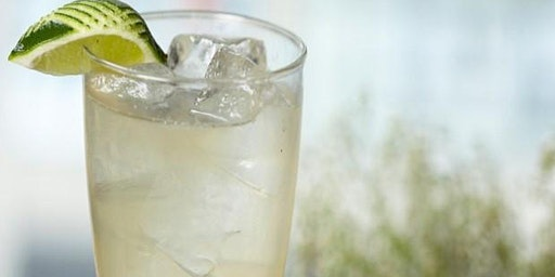 Beverage Academy - Intro to Gin