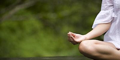 Programa Introdutório de Mindfulness - Eu S.O.U. Fev/2020
