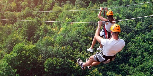 Zip line + Aerial Adventure Through the Forest