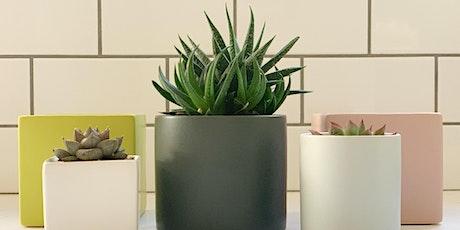 Succulent Arrangements with The Modern Planter + Kataphora Boutique tickets