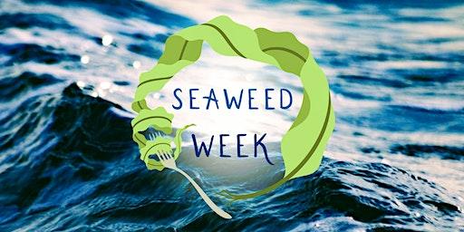 Seaweed Week: A Food + Drink Celebration of Maine's Kelp Harvest