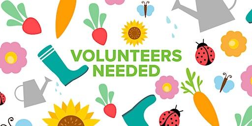 Volunteers Needed! Vegas Verdes ES