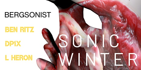 Sonic Winter After Party ft. Bergsonist tickets