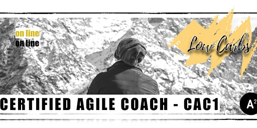 LowCarbs: Agile Coaching Online Program January 2020