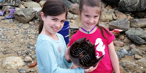 Crabby Kids at Howland's Landing