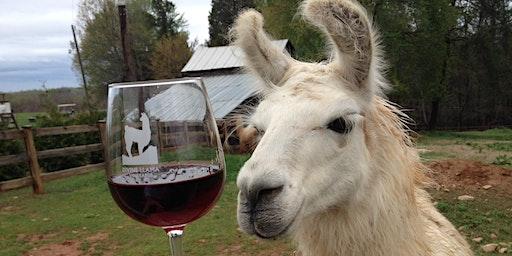 A South American wine tasting...Alpaca bottle opener !