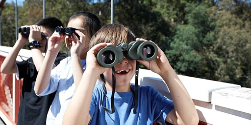 Junior Rangers Nature Treasure Hunt - Brisbane Ranges National Park