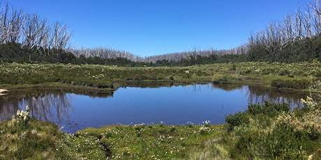 Junior Rangers Lake Mountain Alpine Program- Yarra Ranges National Park tickets