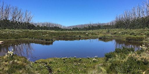 Junior Rangers Lake Mountain Alpine Program- Yarra Ranges National Park