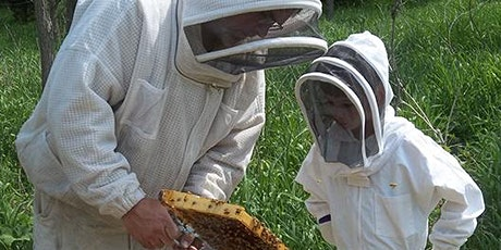 Learn to Keep Bees, Beginning Beekeeping - 6 Class Days Spanning the Season tickets