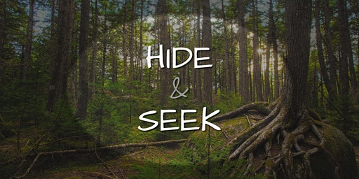 Lane Cove Bush Kids - Hide & Seek