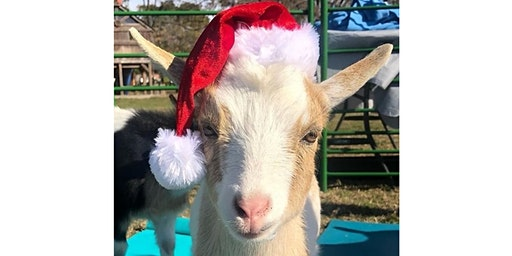 Christmas Goat Yoga - Brunch'n Goats! - Sun., Dec. 22 @ 11AM