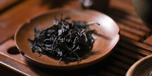 Tea Curious Series: Wuyi Oolong Tasting