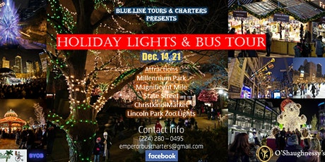 Chicago Holiday Lights & Bus Tour tickets