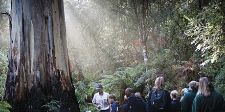 LOCATION CHANGE Junior Rangers Flora Explorer - Plenty Gorge Parklands tickets