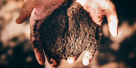 Composting 101 Course / Cwrs Compostio tickets