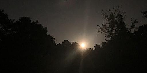 Full Moon Night Walk at Mason Mill Park