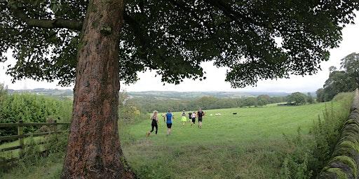 Twilight Trail Run: Dinckley (12km)