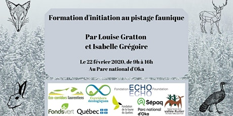 Formation d'initiation au pistage faunique billets